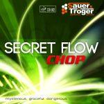 Secret Flow