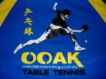 OOAK Table Tennis Team Shirt (L/XL/XXL) Clearance